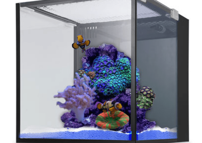 innovative marine tanks