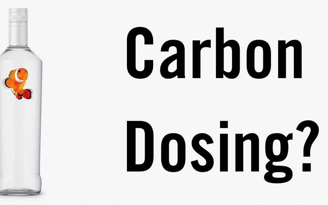 What is Carbon Dosing?